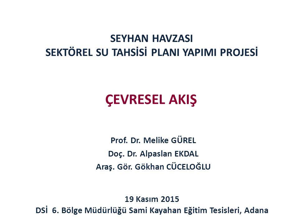 SEYHAN HAVZASI SEKTÖREL SU TAHSİSİ PLANI YAPIMI PROJESİ Prof.