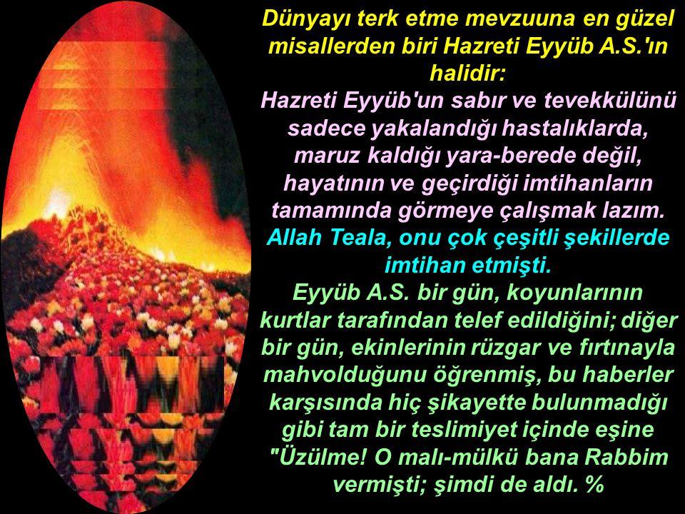Dünyayı terk etme mevzuuna en güzel misallerden biri Hazreti Eyyüb A.S.'ın halidir: Hazreti Eyyüb'un sabır ve tevekkülünü sadece yakalandığı hastalıkl