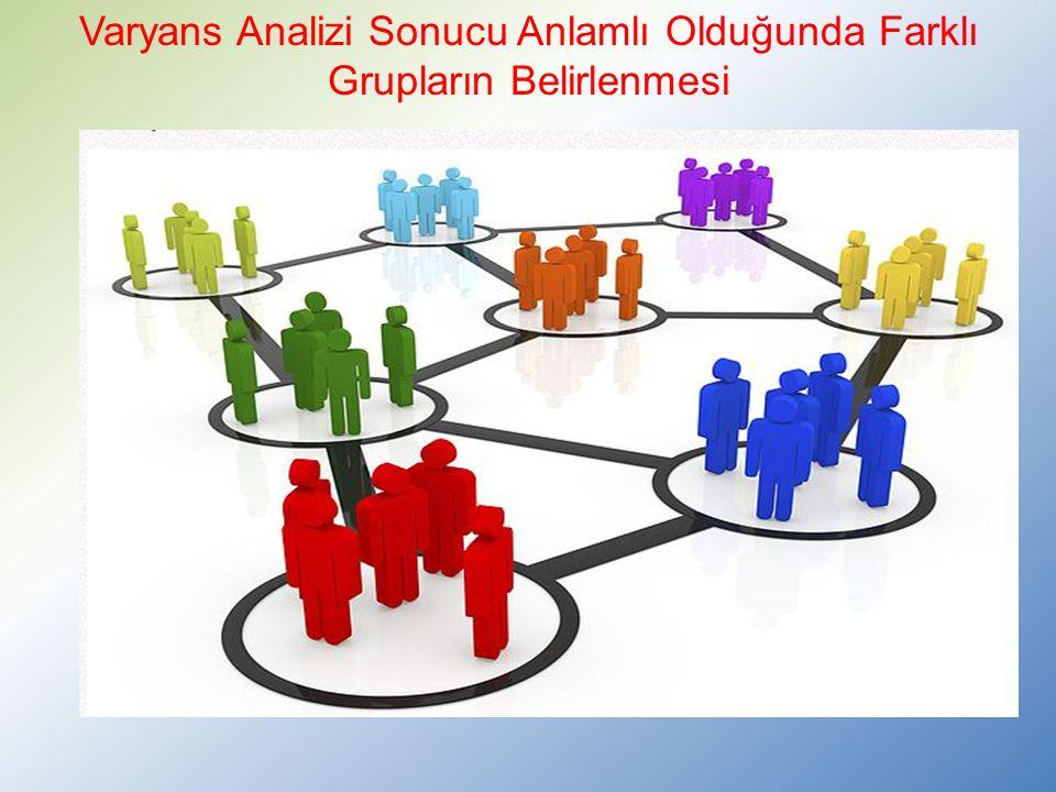 Varyans Analizi Sonucu Anlamlı Olduğunda Farklı Grupların Belirlenmesi