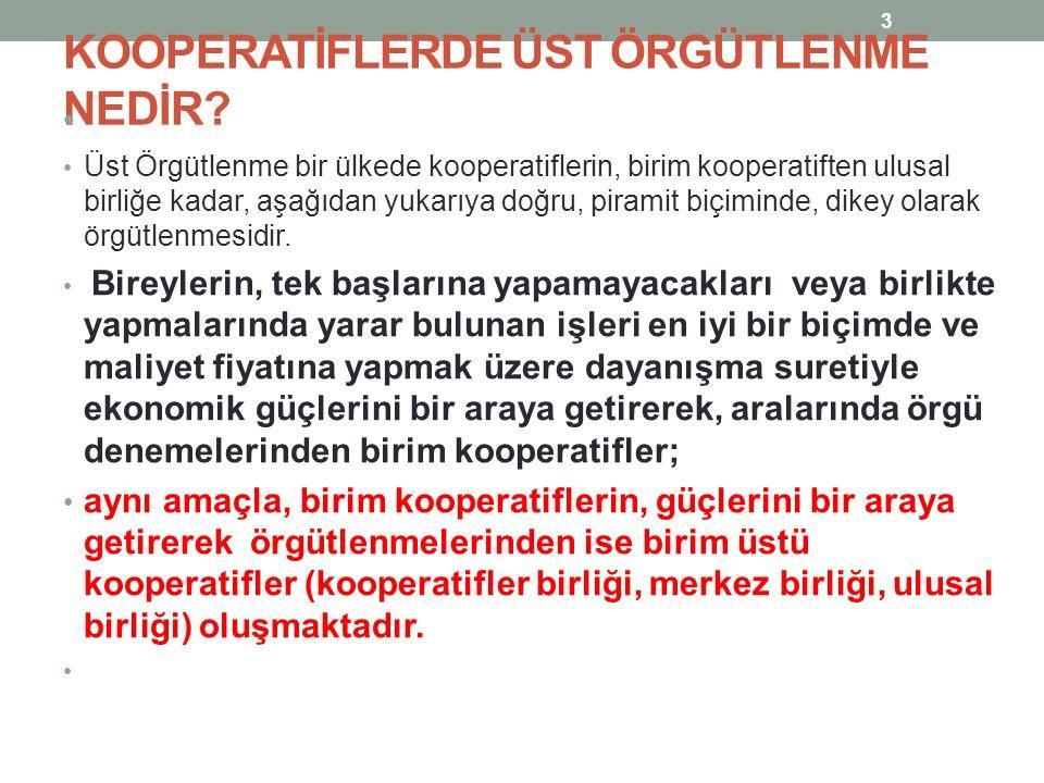 KOOPERATİFLERDE ÜST ÖRGÜTLENME NEDİR.