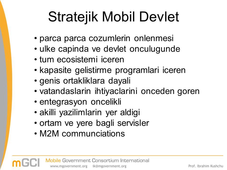 Stratejik Mobil Devlet parca parca cozumlerin onlenmesi ulke capinda ve devlet onculugunde tum ecosistemi iceren kapasite gelistirme programlari icere