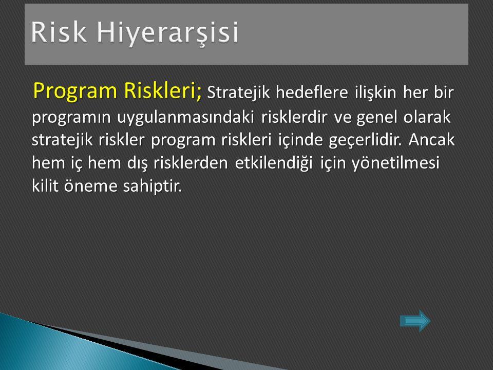 Program Riskleri; Stratejik hedeflere ilişkin her bir programın uygulanmasındaki risklerdir ve genel olarak stratejik riskler program riskleri içinde geçerlidir.