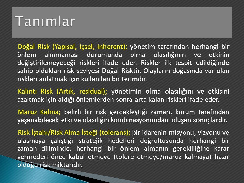 Doğal Risk (Yapısal, içsel, inherent); yönetim tarafından herhangi bir önlem alınmaması durumunda olma olasılığının ve etkinin değiştirilemeyeceği riskleri ifade eder.