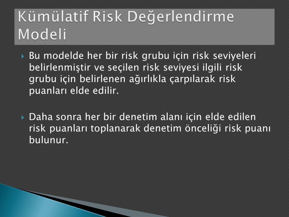  Bu modelde her bir risk grubu için risk seviyeleri belirlenmiştir ve seçilen risk seviyesi ilgili risk grubu için belirlenen ağırlıkla çarpılarak risk puanları elde edilir.