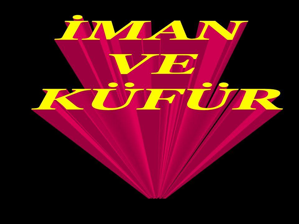 Kur'an-ı Kerim: Allah (celle celaluhu) kendisine şirk koşulmasını bağışlamaz, onun dışında kalan günahları dilediği kimseden affeder (Nisa suresi 48.