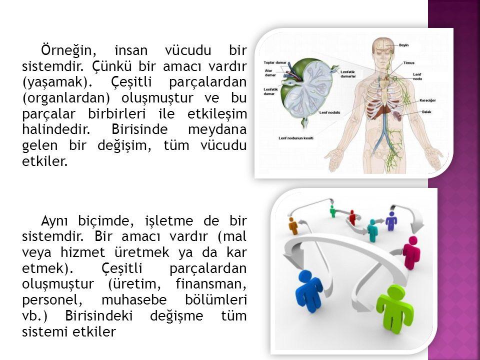 Örneğin, insan vücudu bir sistemdir. Çünkü bir amacı vardır (yaşamak). Çeşitli parçalardan (organlardan) oluşmuştur ve bu parçalar birbirleri ile etki