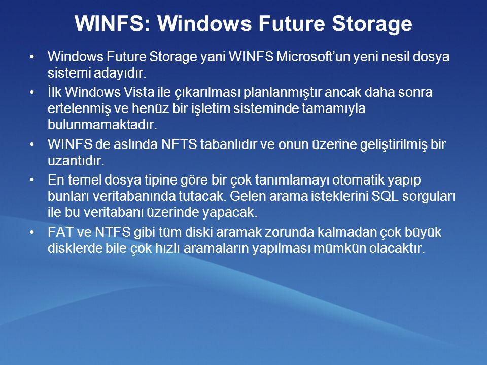 WINFS: Windows Future Storage Windows Future Storage yani WINFS Microsoft'un yeni nesil dosya sistemi adayıdır.