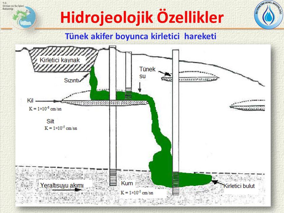Hidrojeolojik Özellikler Tünek akifer boyunca kirletici hareketi