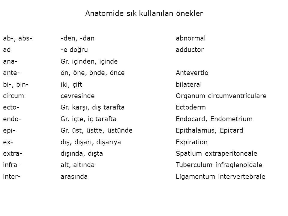 Anatomide sık kullanılan önekler ab-, abs--den, -danabnormal ad-e doğruadductor ana-Gr. içinden, içinde ante-ön, öne, önde, önceAntevertio bi-, bin-ik