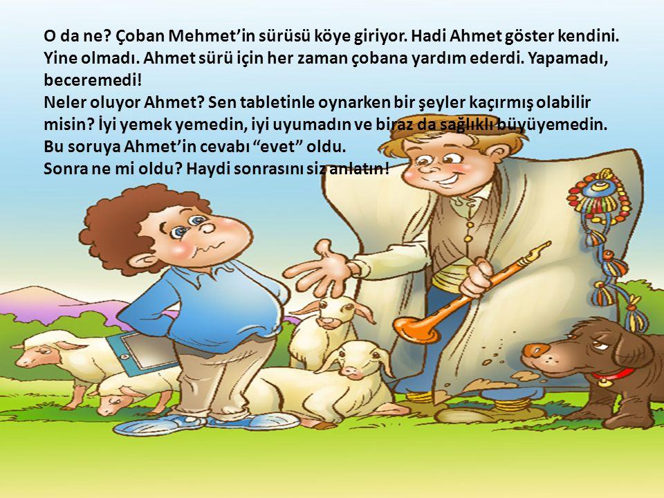 O da ne. Çoban Mehmet'in sürüsü köye giriyor. Hadi Ahmet göster kendini.