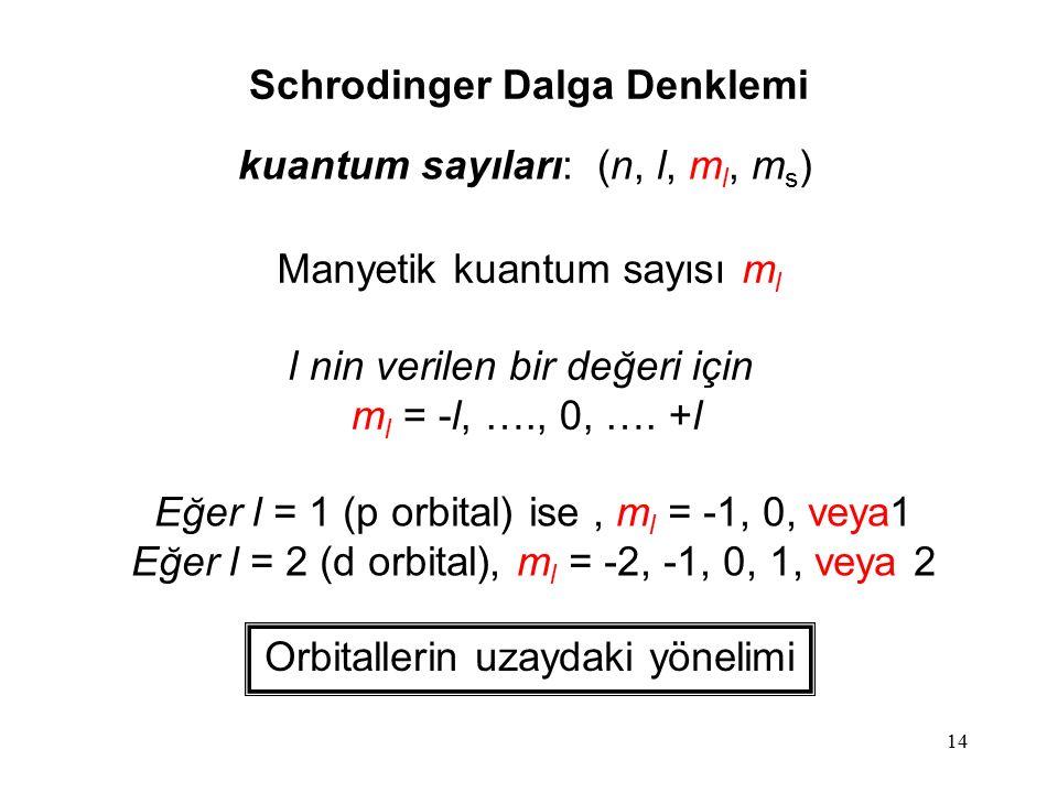 14 kuantum sayıları: (n, l, m l, m s ) Manyetik kuantum sayısı m l l nin verilen bir değeri için m l = -l, …., 0, …. +l Orbitallerin uzaydaki yönelimi
