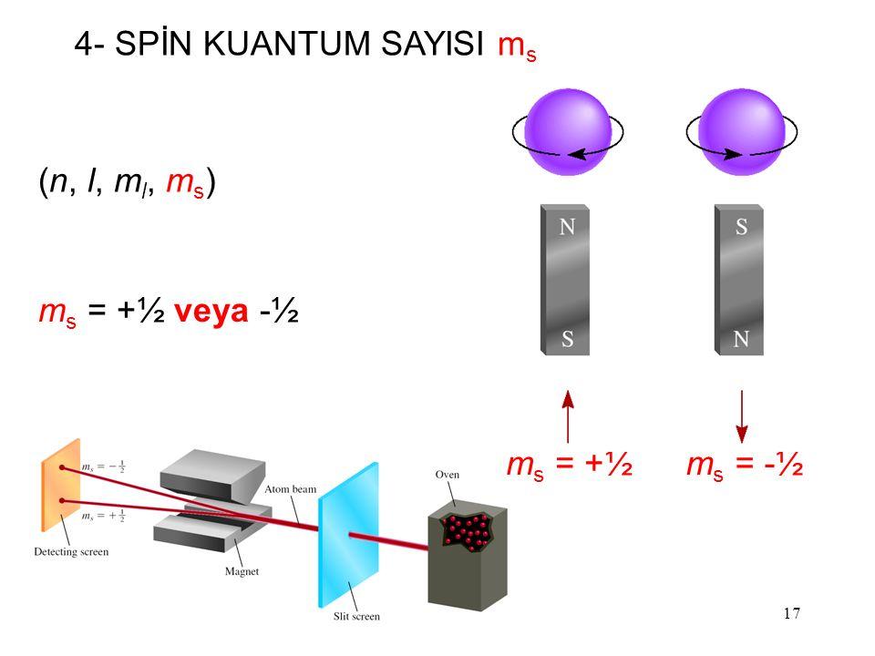 17 (n, l, m l, m s ) m s = +½ veya -½ 4- SPİN KUANTUM SAYISI m s m s = -½m s = +½