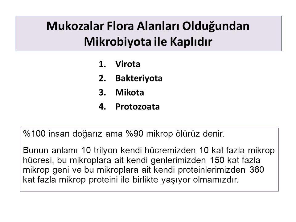 Mukozalar Flora Alanları Olduğundan Mikrobiyota ile Kaplıdır 1.Virota 2.Bakteriyota 3.Mikota 4.Protozoata %100 insan doğarız ama %90 mikrop ölürüz denir.