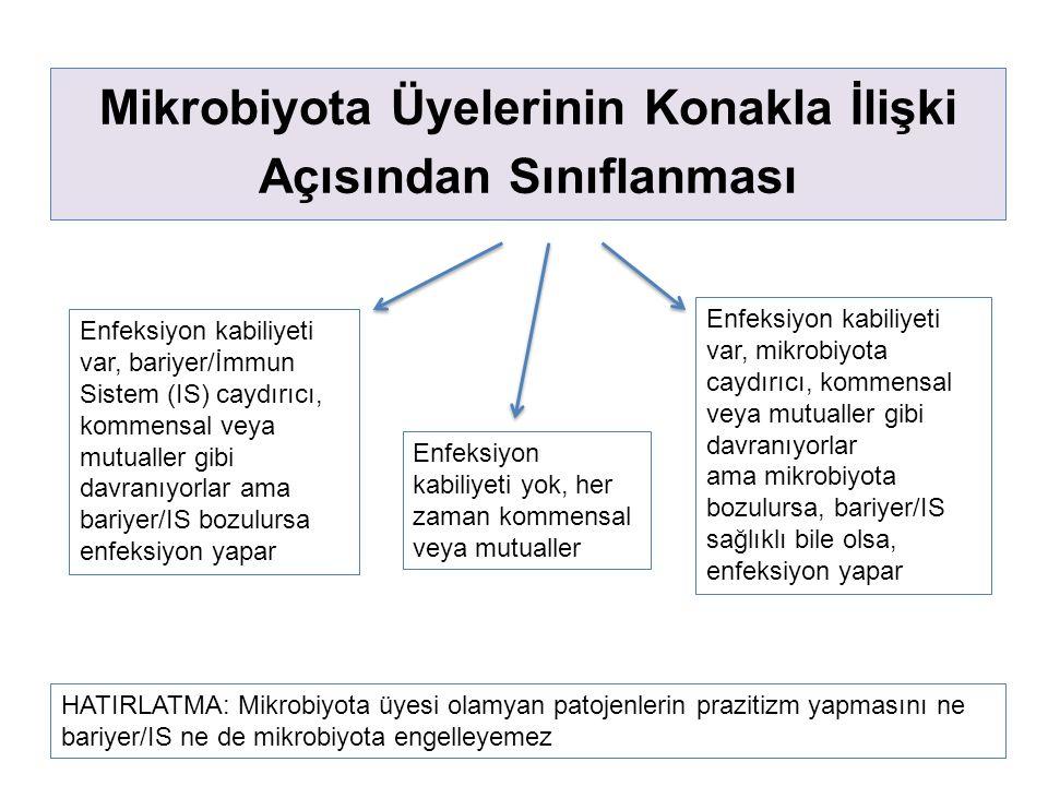 Mikrobiyota Üyelerinin Konakla İlişki Açısından Sınıflanması Enfeksiyon kabiliyeti var, bariyer/İmmun Sistem (IS) caydırıcı, kommensal veya mutualler gibi davranıyorlar ama bariyer/IS bozulursa enfeksiyon yapar Enfeksiyon kabiliyeti var, mikrobiyota caydırıcı, kommensal veya mutualler gibi davranıyorlar ama mikrobiyota bozulursa, bariyer/IS sağlıklı bile olsa, enfeksiyon yapar HATIRLATMA: Mikrobiyota üyesi olamyan patojenlerin prazitizm yapmasını ne bariyer/IS ne de mikrobiyota engelleyemez Enfeksiyon kabiliyeti yok, her zaman kommensal veya mutualler