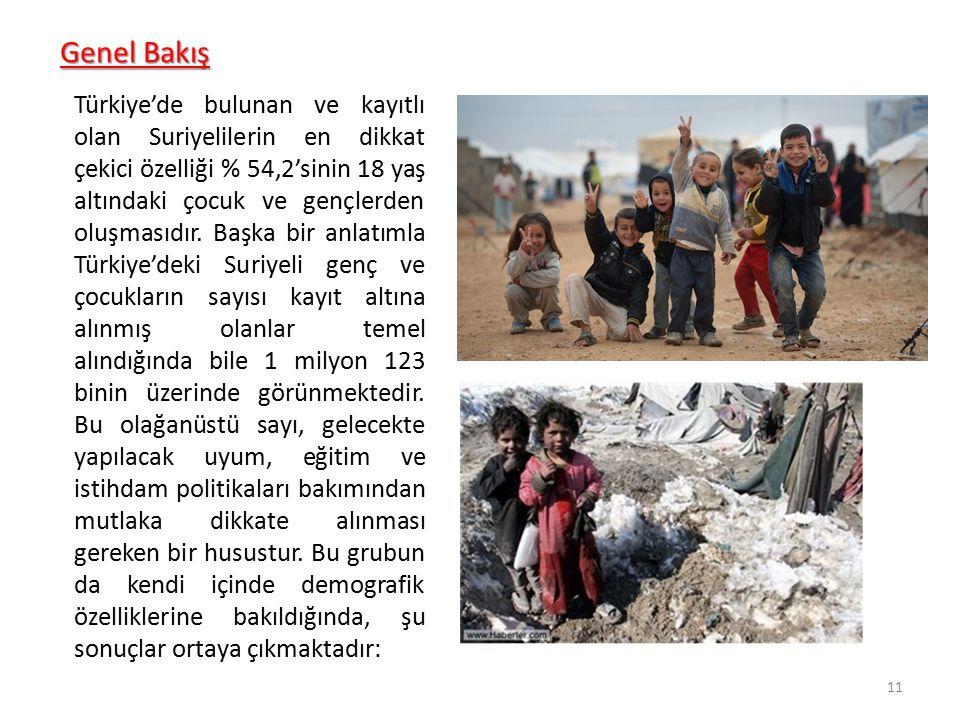 Genel Bakış Türkiye'de bulunan ve kayıtlı olan Suriyelilerin en dikkat çekici özelliği % 54,2'sinin 18 yaş altındaki çocuk ve gençlerden oluşmasıdır.