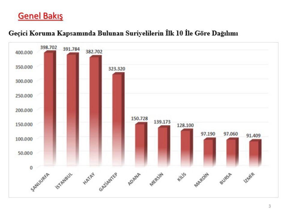 Genel Bakış 0-4 yaş arasındaki 415.000 çocuğun ciddi bir bölümünün (en az yarısı) Türkiye'de doğduğu söylenebilir.