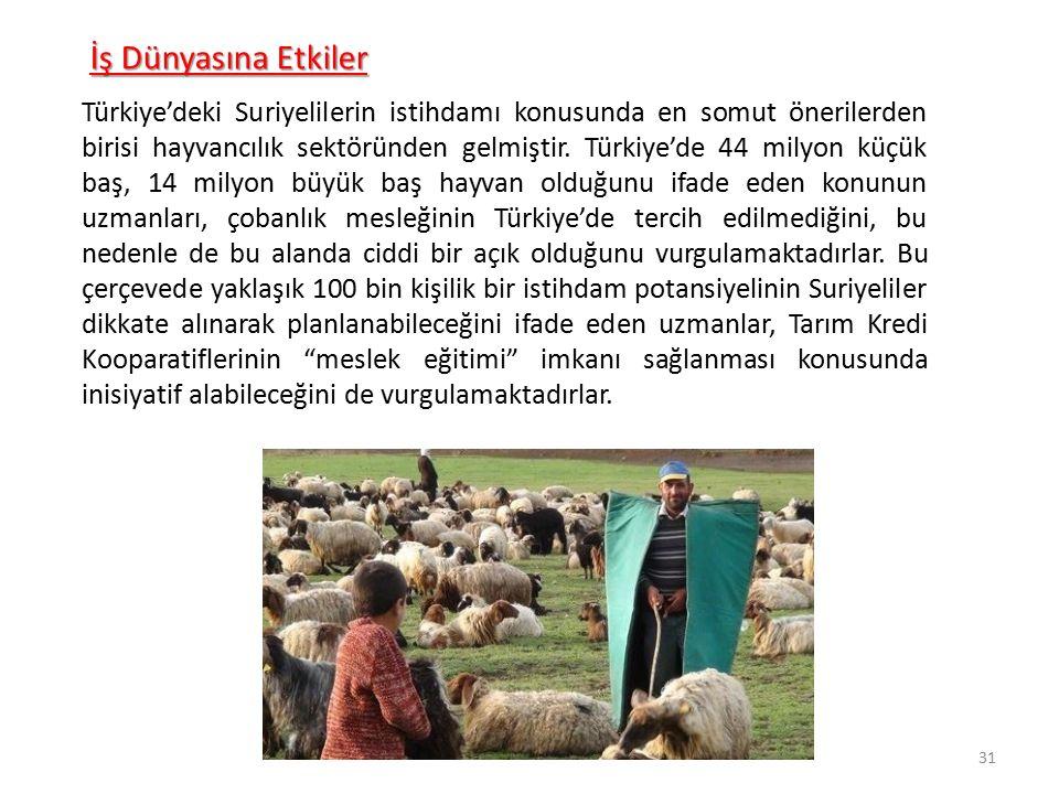 İş Dünyasına Etkiler Türkiye'deki Suriyelilerin istihdamı konusunda en somut önerilerden birisi hayvancılık sektöründen gelmiştir. Türkiye'de 44 milyo