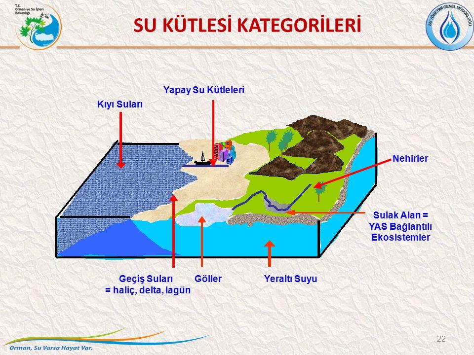 22 Yapay Su Kütleleri Sulak Alan = YAS Bağlantılı Ekosistemler Nehirler Geçiş Suları = haliç, delta, lagün Kıyı Suları Yeraltı SuyuGöller SU KÜTLESİ KATEGORİLERİ