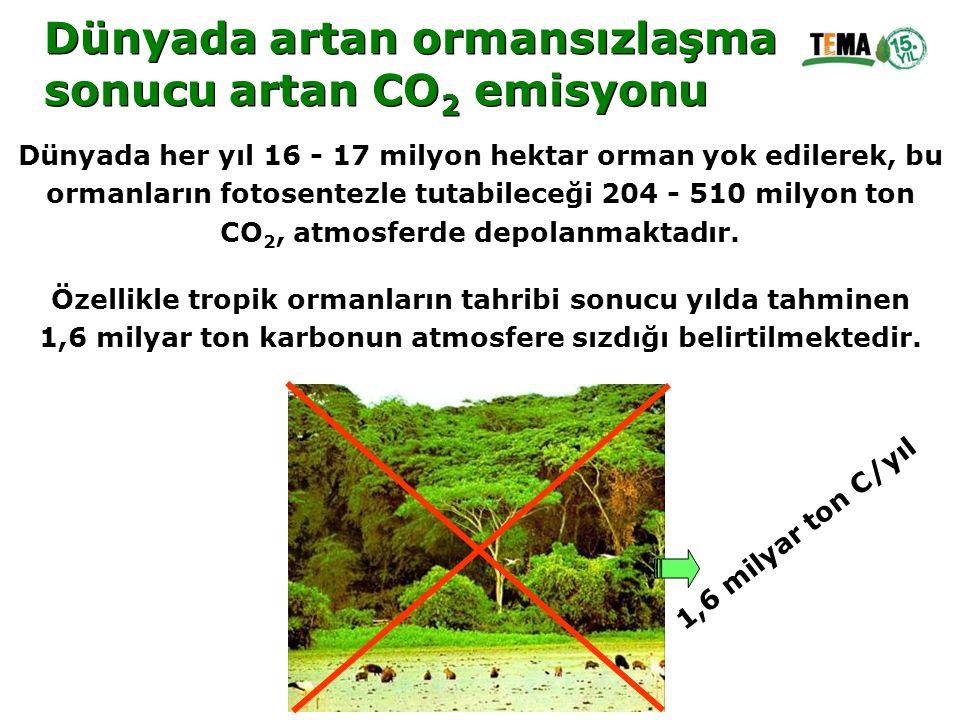 Dünyada artan ormansızlaşma sonucu artan CO 2 emisyonu Dünyada artan ormansızlaşma sonucu artan CO 2 emisyonu Dünyada her yıl 16 - 17 milyon hektar or
