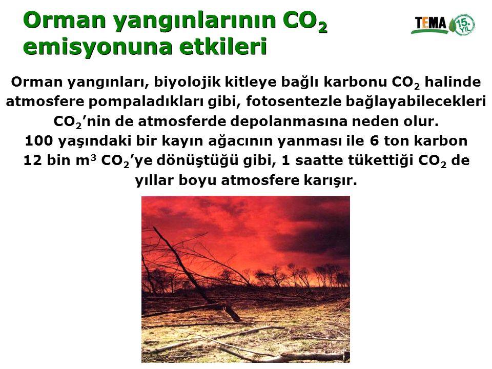 Orman yangınlarının CO 2 emisyonuna etkileri Orman yangınlarının CO 2 emisyonuna etkileri Orman yangınları, biyolojik kitleye bağlı karbonu CO 2 halin