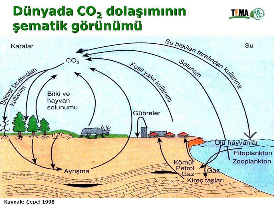 Dünyada CO 2 dolaşımının şematik görünümü Dünyada CO 2 dolaşımının şematik görünümü Kaynak: Çepel 1998