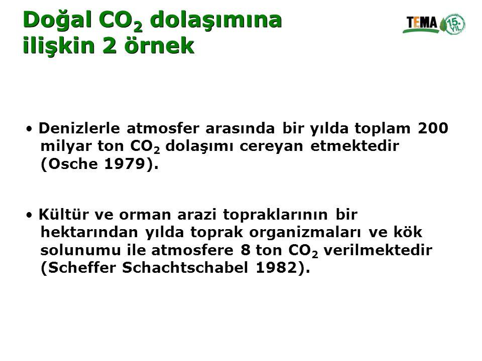 Denizlerle atmosfer arasında bir yılda toplam 200 milyar ton CO 2 dolaşımı cereyan etmektedir (Osche 1979). Kültür ve orman arazi topraklarının bir he