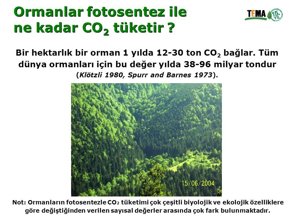 Ormanlar fotosentez ile ne kadar CO 2 tüketir ? Ormanlar fotosentez ile ne kadar CO 2 tüketir ? Bir hektarlık bir orman 1 yılda 12-30 ton CO 2 bağlar.