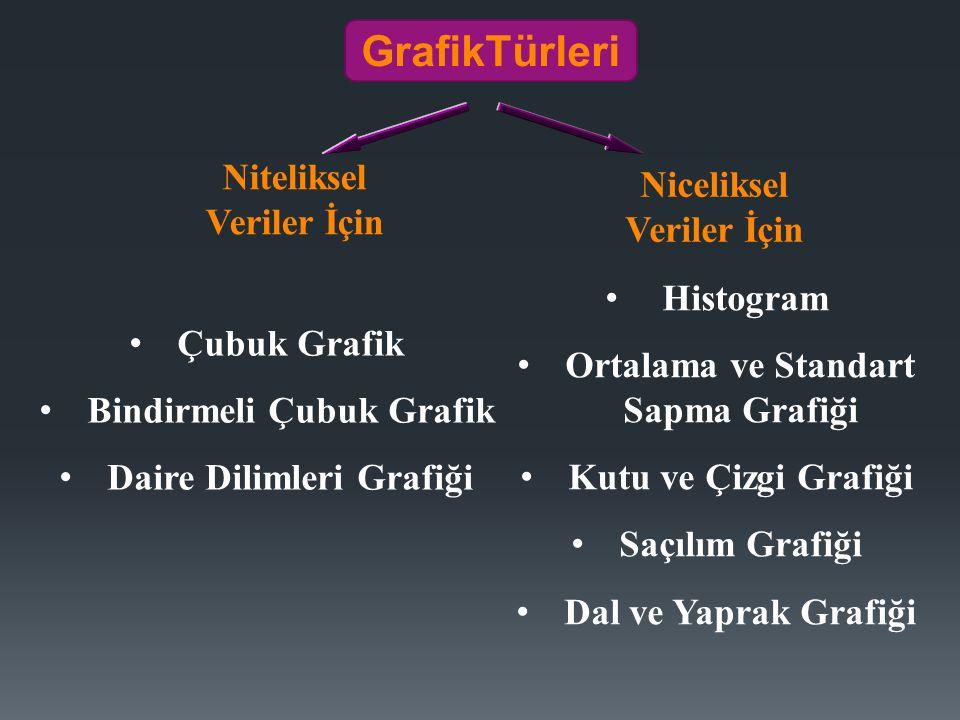 GrafikTürleri Niteliksel Veriler İçin Niceliksel Veriler İçin Çubuk Grafik Bindirmeli Çubuk Grafik Daire Dilimleri Grafiği Histogram Ortalama ve Standart Sapma Grafiği Kutu ve Çizgi Grafiği Saçılım Grafiği Dal ve Yaprak Grafiği