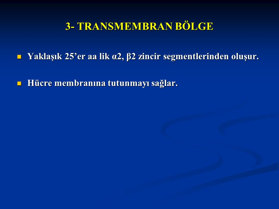3- TRANSMEMBRAN BÖLGE Yaklaşık 25'er aa lik α2, β2 zincir segmentlerinden oluşur. Yaklaşık 25'er aa lik α2, β2 zincir segmentlerinden oluşur. Hücre me