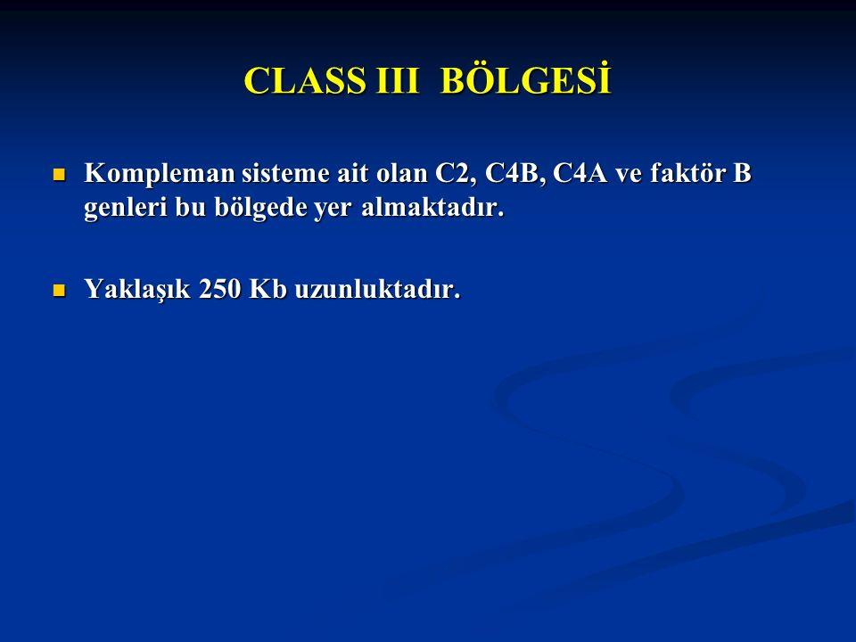 CLASS III BÖLGESİ Kompleman sisteme ait olan C2, C4B, C4A ve faktör B genleri bu bölgede yer almaktadır. Kompleman sisteme ait olan C2, C4B, C4A ve fa