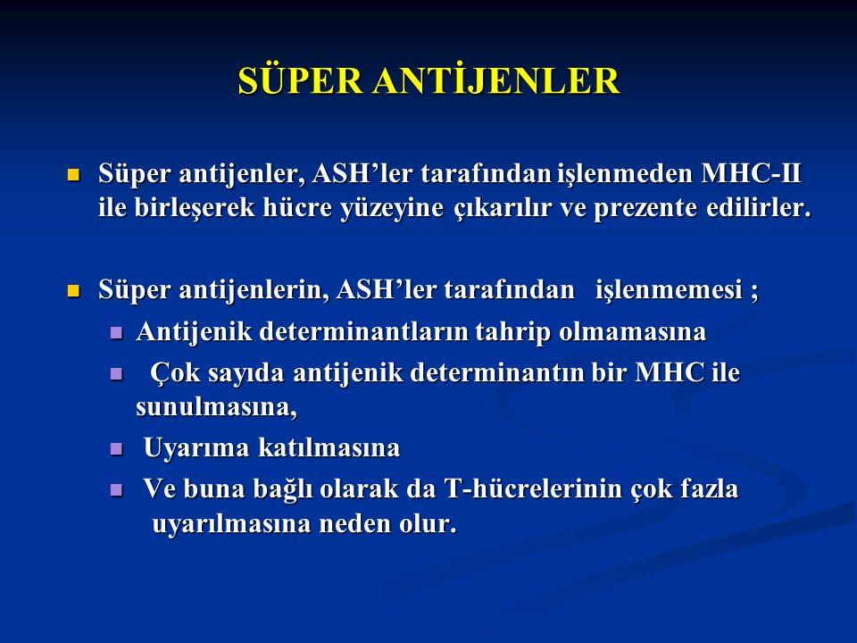 SÜPER ANTİJENLER Süper antijenler, ASH'ler tarafından işlenmeden MHC-II ile birleşerek hücre yüzeyine çıkarılır ve prezente edilirler. Süper antijenle