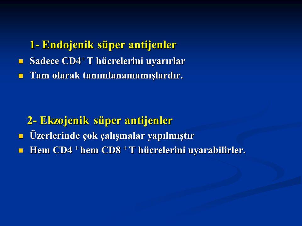 1- Endojenik süper antijenler 1- Endojenik süper antijenler Sadece CD4 + T hücrelerini uyarırlar Sadece CD4 + T hücrelerini uyarırlar Tam olarak tanım