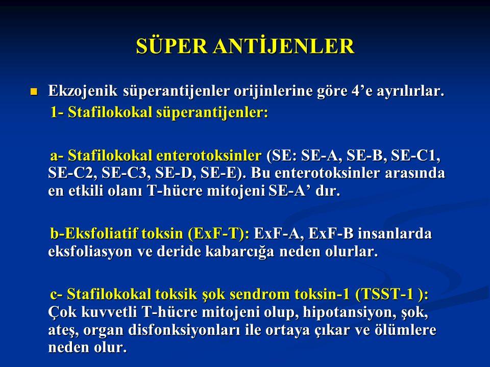 SÜPER ANTİJENLER Ekzojenik süperantijenler orijinlerine göre 4'e ayrılırlar. Ekzojenik süperantijenler orijinlerine göre 4'e ayrılırlar. 1- Stafilokok