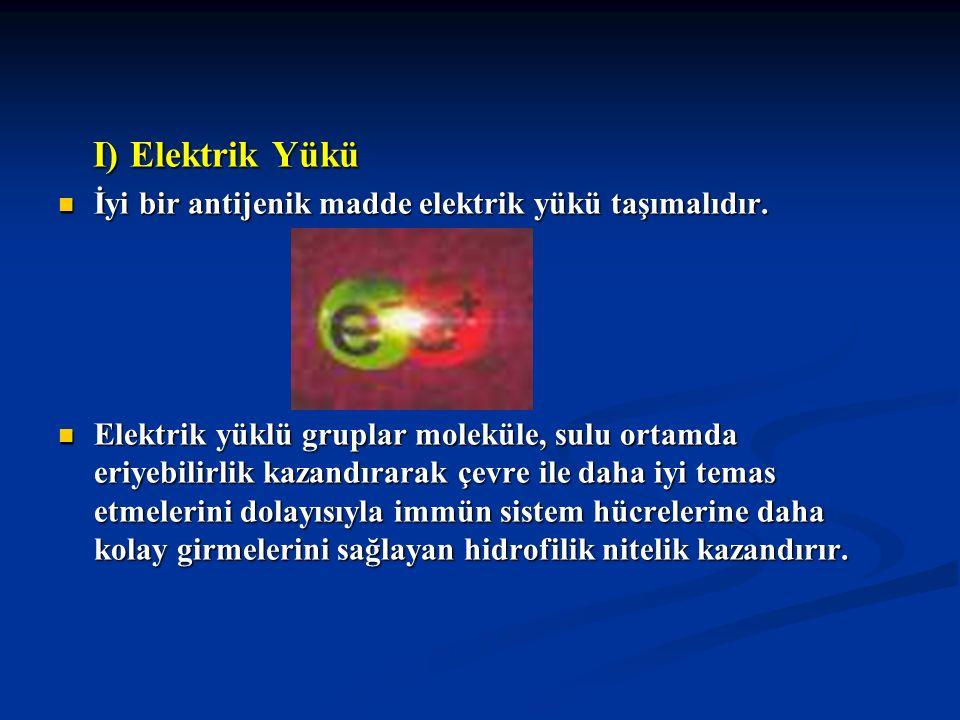 I) Elektrik Yükü I) Elektrik Yükü İyi bir antijenik madde elektrik yükü taşımalıdır. İyi bir antijenik madde elektrik yükü taşımalıdır. Elektrik yüklü