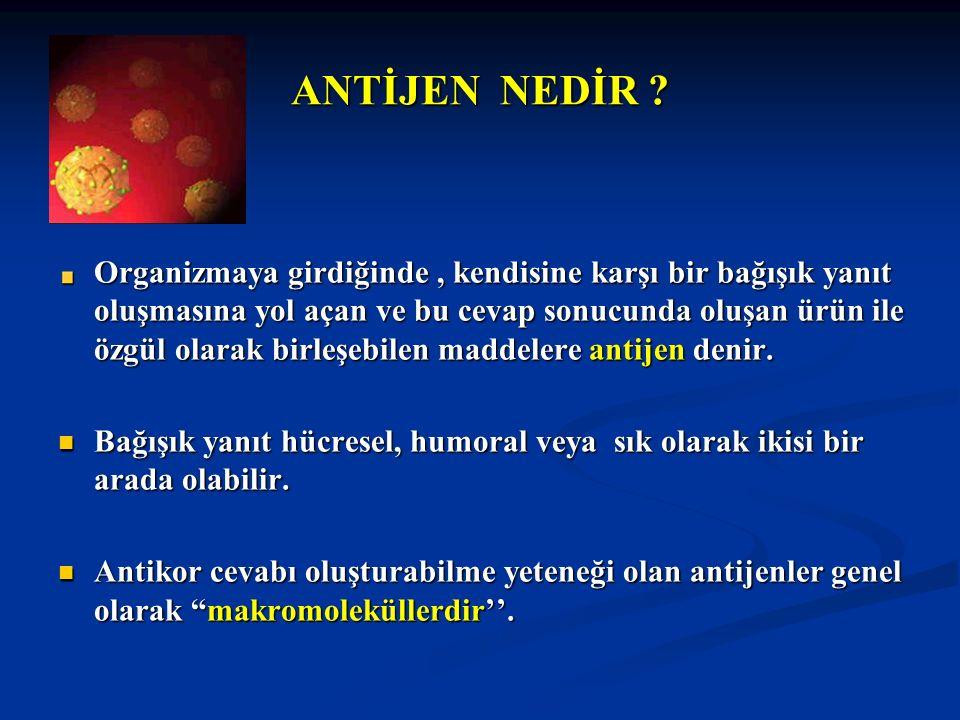 HAPTEN Bazı kimyasal maddeler (dinitrofenol), N-asitler Bazı kimyasal maddeler (dinitrofenol), N-asitler  - Laktamaz  - Laktamaz Bazı ilaçlar-Penisilin (6APA)------------------ Penisilonik asit