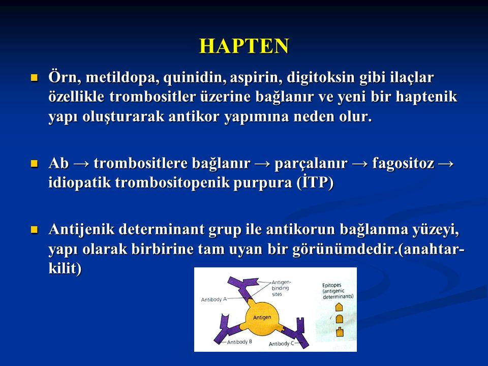 HAPTEN Örn, metildopa, quinidin, aspirin, digitoksin gibi ilaçlar özellikle trombositler üzerine bağlanır ve yeni bir haptenik yapı oluşturarak antiko
