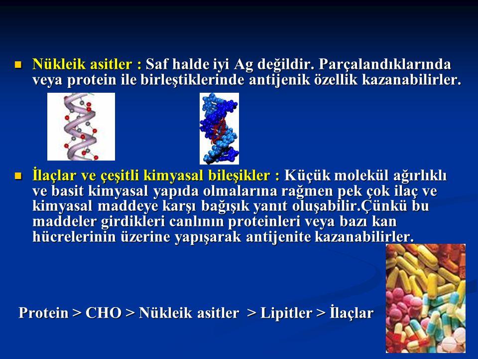 Nükleik asitler : Saf halde iyi Ag değildir. Parçalandıklarında veya protein ile birleştiklerinde antijenik özellik kazanabilirler. Nükleik asitler :