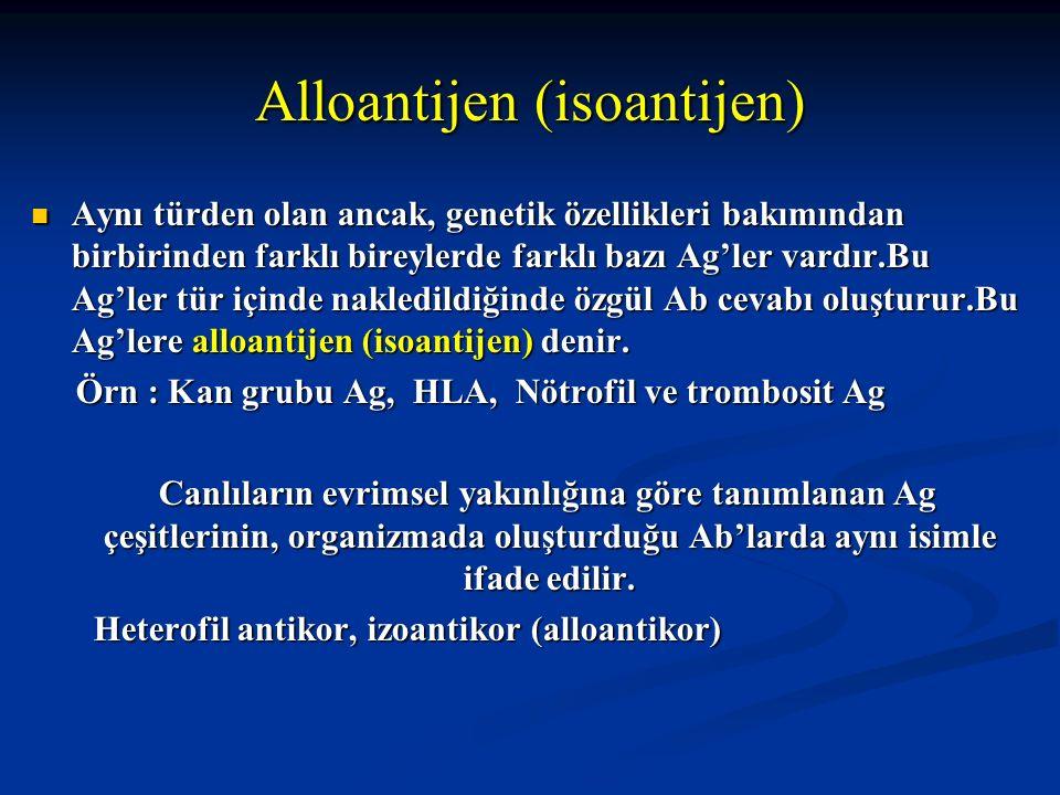Alloantijen (isoantijen) Aynı türden olan ancak, genetik özellikleri bakımından birbirinden farklı bireylerde farklı bazı Ag'ler vardır.Bu Ag'ler tür
