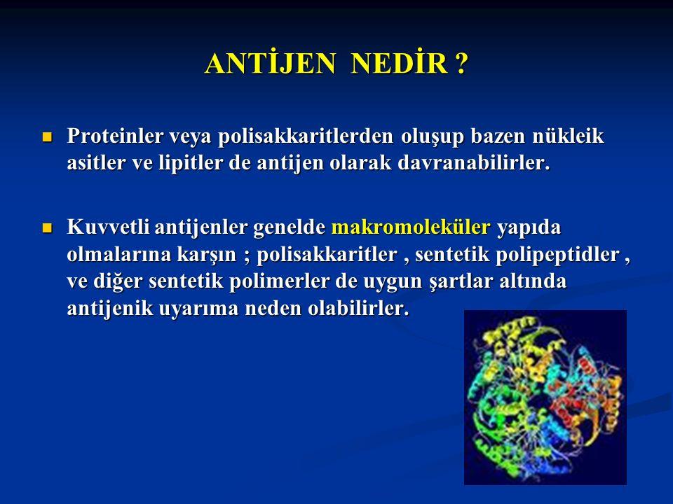 ANTİJEN NEDİR ? Proteinler veya polisakkaritlerden oluşup bazen nükleik asitler ve lipitler de antijen olarak davranabilirler. Proteinler veya polisak