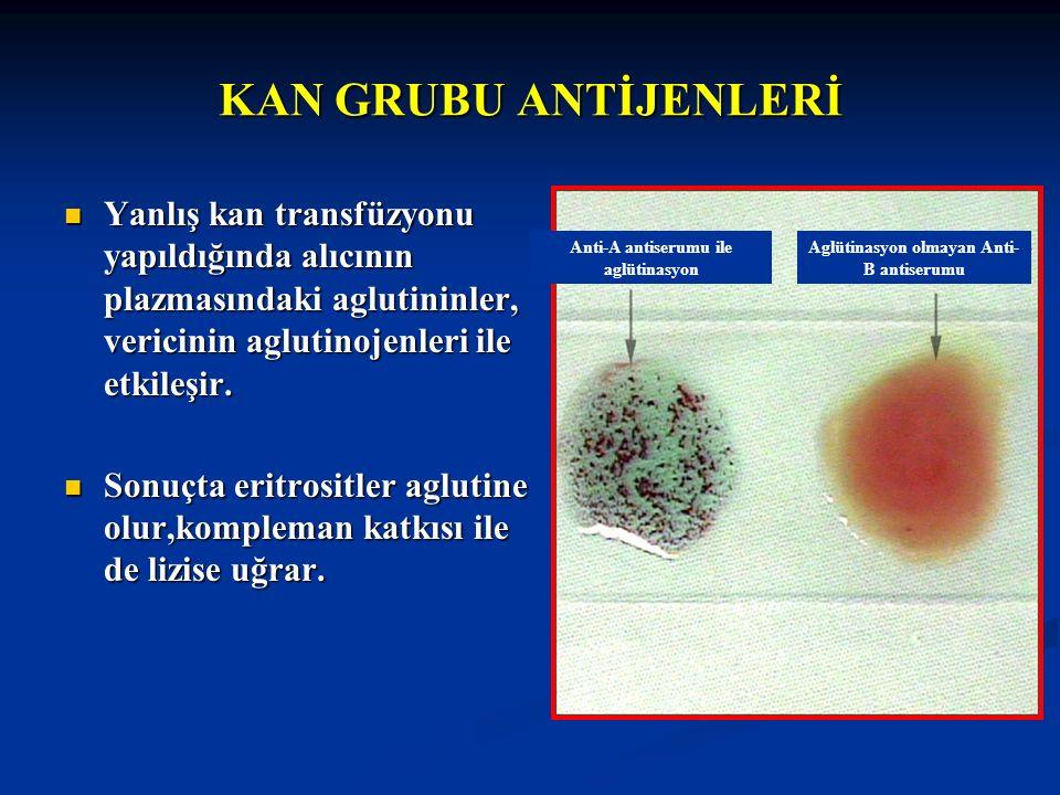 KAN GRUBU ANTİJENLERİ Yanlış kan transfüzyonu yapıldığında alıcının plazmasındaki aglutininler, vericinin aglutinojenleri ile etkileşir. Yanlış kan tr