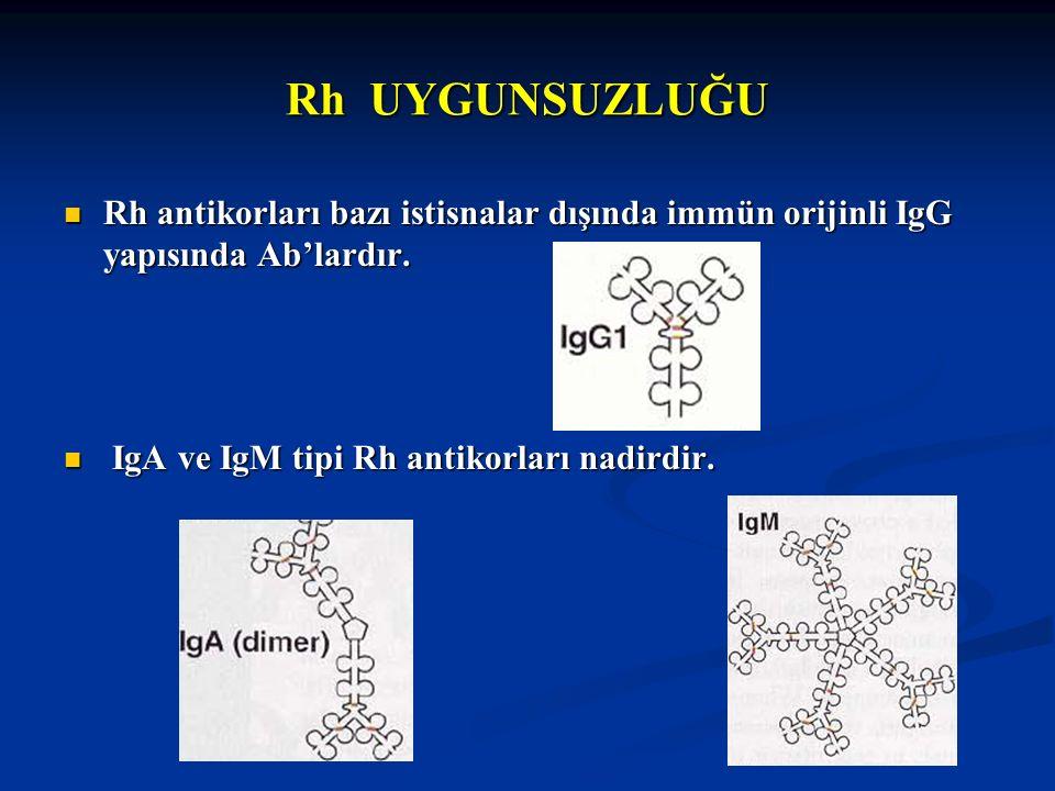 Rh UYGUNSUZLUĞU Rh antikorları bazı istisnalar dışında immün orijinli IgG yapısında Ab'lardır. Rh antikorları bazı istisnalar dışında immün orijinli I