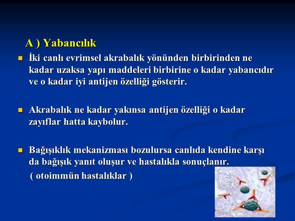 MHC Molekülleri ve Hastalıklarla İlgisi HASTALIK İLGİLİ HLA ANTİJENİ ORTALAMA RÖLATİF RİSK HematokromozisNarkolepsi Ankilozan spondilit Reiter sendromu Psoriatrik spondilit Akut anterior üveit Behçet hastalığı Romatoid artrit Pausiartiküler romatoid art.
