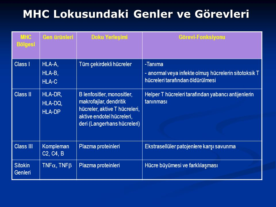 MHC Lokusundaki Genler ve Görevleri MHC Bölgesi Gen ürünleriDoku YerleşimiGörevi-Fonksiyonu Class IHLA-A, HLA-B, HLA-C Tüm çekirdekli hücreler-Tanıma