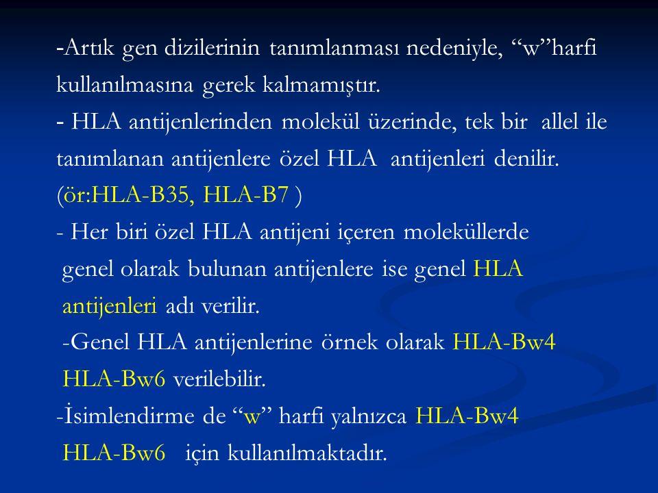 """- Artık gen dizilerinin tanımlanması nedeniyle, """"w""""harfi kullanılmasına gerek kalmamıştır. - HLA antijenlerinden molekül üzerinde, tek bir allel ile t"""
