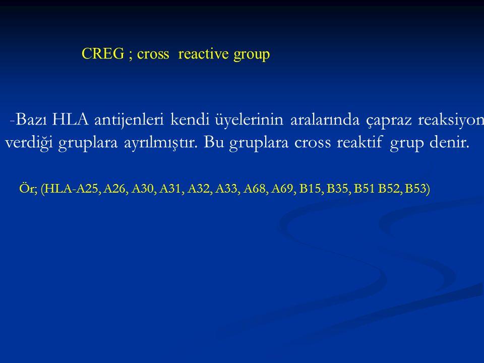 CREG ; cross reactive group -Bazı HLA antijenleri kendi üyelerinin aralarında çapraz reaksiyon verdiği gruplara ayrılmıştır. Bu gruplara cross reaktif