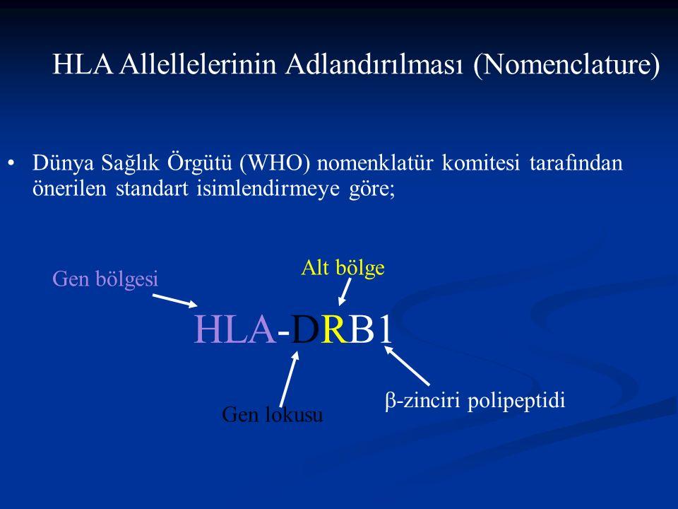 HLA Allellelerinin Adlandırılması (Nomenclature) Dünya Sağlık Örgütü (WHO) nomenklatür komitesi tarafından önerilen standart isimlendirmeye göre; HLA-