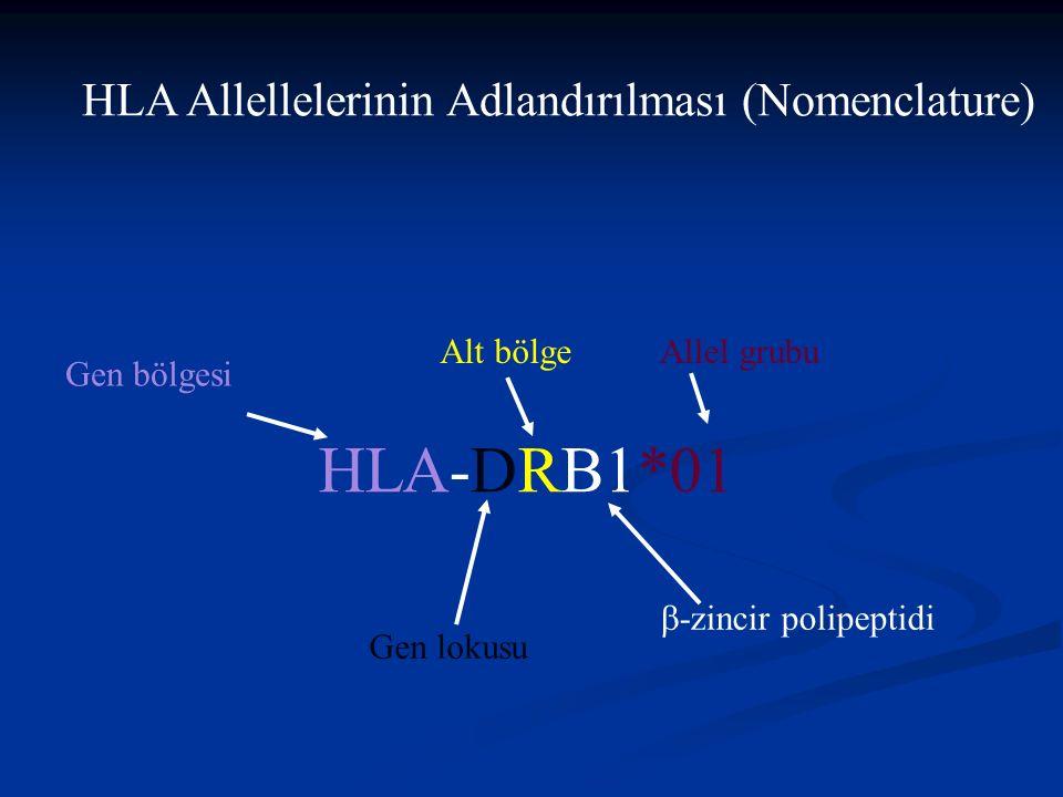HLA Allellelerinin Adlandırılması (Nomenclature) HLA-DRB1*01 Gen bölgesi Gen lokusu Alt bölge  -zincir polipeptidi Allel grubu