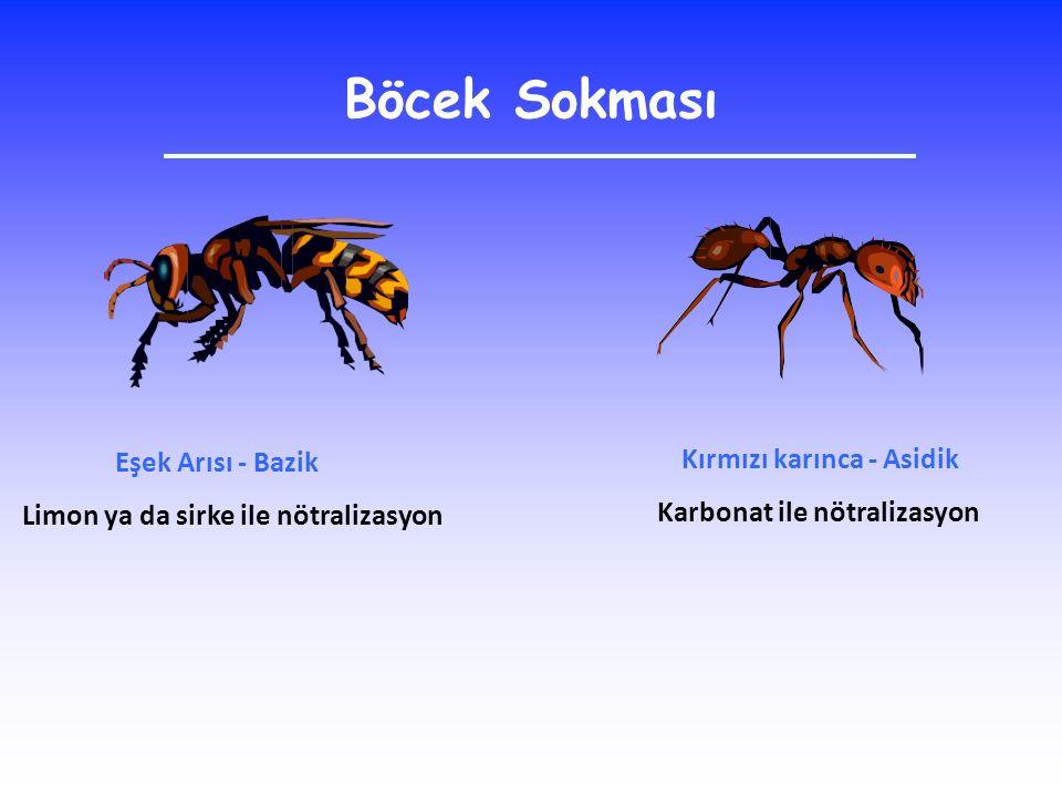 Böcek Sokması Eşek Arısı - Bazik Limon ya da sirke ile nötralizasyon Kırmızı karınca - Asidik Karbonat ile nötralizasyon