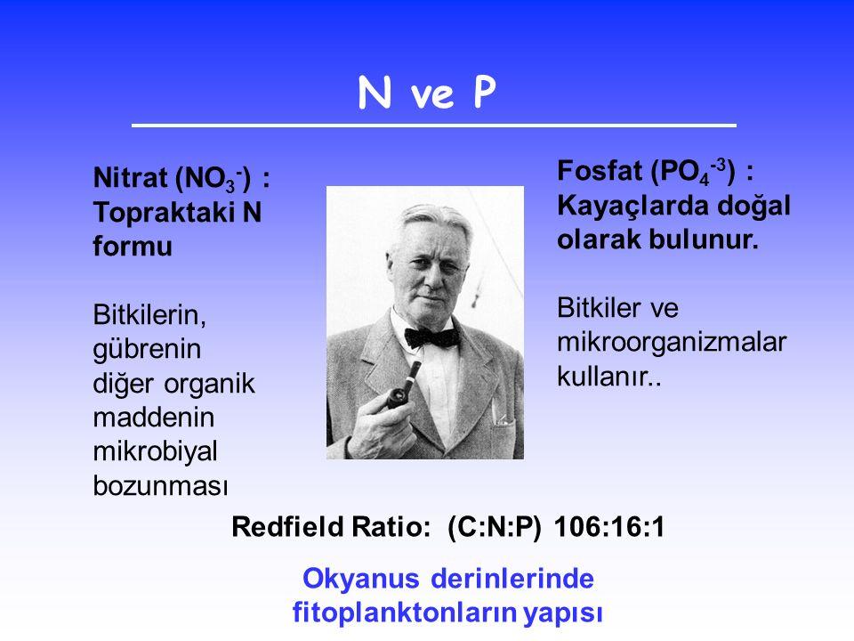 Nitrat (NO 3 - ) : Topraktaki N formu Bitkilerin, gübrenin diğer organik maddenin mikrobiyal bozunması Fosfat (PO 4 -3 ) : Kayaçlarda doğal olarak bul