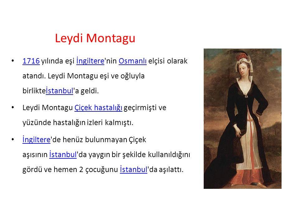 Leydi Montagu 1716 yılında eşi İngiltere'nin Osmanlı elçisi olarak atandı. Leydi Montagu eşi ve oğluyla birlikteİstanbul'a geldi. 1716İngiltereOsmanlı